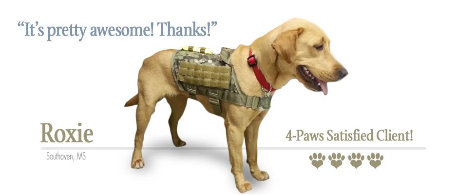 Tactical Dog Backpack Cg Backpacks