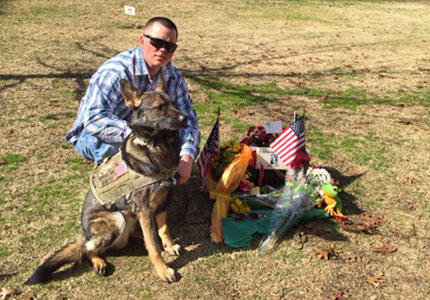 Veteran Jake and ForceK9.com MOLLE K9 Vest Customer Smokey